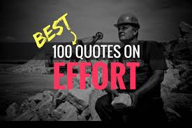 Effort Quotes Gorgeous 48 Inspirational Quotes On Effort