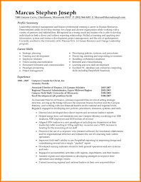 9 Resume Professional Summary Applicationleter Com