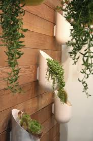the  best outdoor wall planters ideas on pinterest  succulent