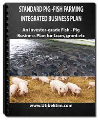 Pig Farming Business Plan Standard Fish And Pig Farm Integrated Business Plan With 3 Years