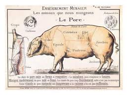 Cuts Of Pork Illustration From A French Domestic Science Manual By H De Puytorac 19th Century