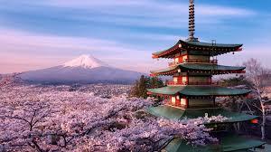48+] Wallpaper Fuji on WallpaperSafari