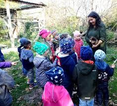 Gemeinde Haringsee Kindergarten Gruppe 2