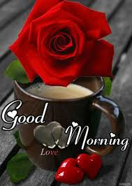 good morning images with love roses red rose good morning photo