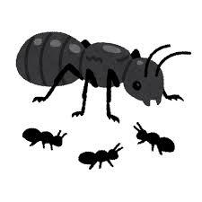 女王アリのイラスト蟻 日本今日