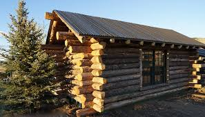 Hybrid Shipping Container and Log Cabin Home Built