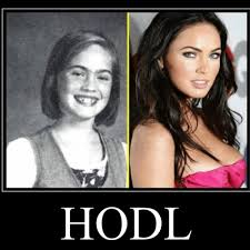 Harold buy on the dip hodl meme. 12k Is Only The Beginning Remember Hodl Bitcoin