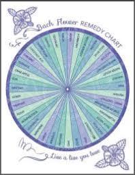 Bach Flower Remedies Chart Bach Flower Remedy Chart Free 23 Best Flower Essences