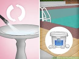 Perfect Image Titled Get Rid Of Mosquitoes Step 16