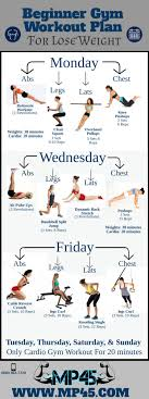 Weight Lifting Exercise Chart – Tips For Life