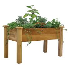 Small Picture Wheelchair Accessible Raised Garden Beds