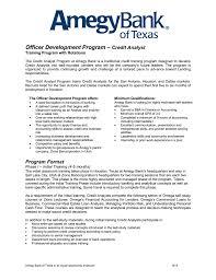 Odp Credit Analyst Program Format