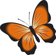 clipart images butterfly orange clip art free image on pixabay