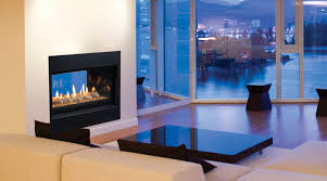 direct vent gas fireplace serenade see thru