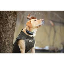 Avery Sporting Dog Boaters 5mm Dog Parka Neoprene Dog Vest