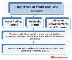 Profit And Loss Account Objectives Of Profit And Loss Account