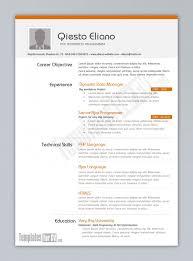 Best It Resume Template Programmer Creative Visualize 56 - Tattica.info