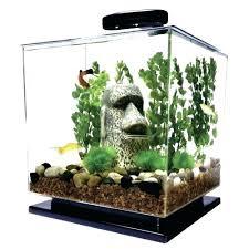 Fish Tank Table Lamp Medium Size Of Coffee Lights Starfish Biorb