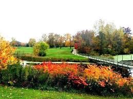 terra garden center garden center golf course banquet center garden center terra garden center mississauga