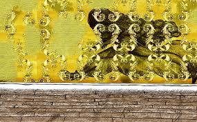 Shakira Levine The Yellow Wallpaper
