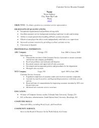 Resume Summary Examples For Customer Service Resume Ixiplay Free