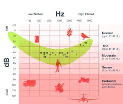 Hearing Chart Words That Are Difficult To Hear With Hearing Loss The