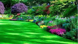 beautiful garden hd wallpaper
