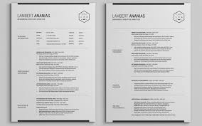 Two Page Resume Sample 10 2 Template And Professional