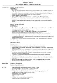 Benefit Analyst Resume Samples Velvet Jobs