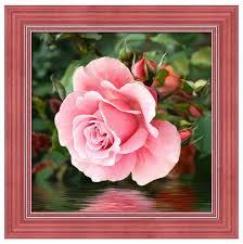 <b>Алмазная</b> живопись <b>Набор алмазной</b> вышивки Роза у воды (АЖ ...
