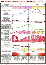 Menstrual Chart A Visual Guide A4 Menstrual Cycle Phases