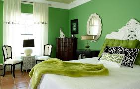 Decorating A Mint Green Bedroom Ideas Inspiration Mesmerizing Green Wall Paint For Bedroom