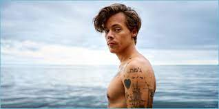 11 Harry Styles HD Wallpapers ...