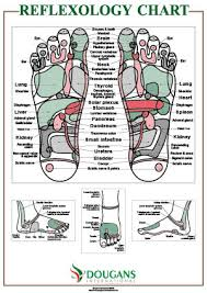 Top Of Foot Reflex Chart A1 Reflexology Chart