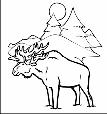 21 winter animal coloring pages free coloring pages of animals coloring for kids
