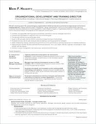 Resume Objectives For Administrative Assistant Magnificent Resume Objective Examples For Administrative Assistant Resume