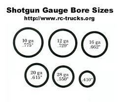 12 Gauge Shotgun Shot Size Chart Www Bedowntowndaytona Com