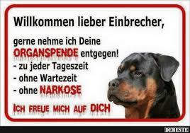 Eingebetteter Bild Link Hunde Hund Funnies Lustige Tierbilder