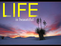 Beautiful Life For Images