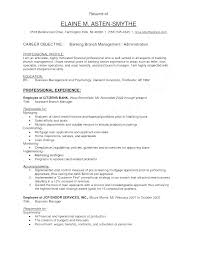 Teller Job Resume Resume For Bank Teller Branch Controller Resume