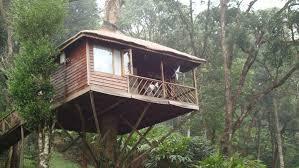 tree house resort. Kerala-treehouse-honeymoon Tree House Resort