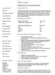 Cv Shop Assistant Camera Assistant Resumeplate Operator Samples Velvet Jobs Cv