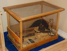 rabbit house plans. Indoor Hutch Rabbit House Plans