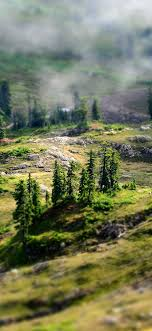 nx28-mountain-country-spring-forest-nature