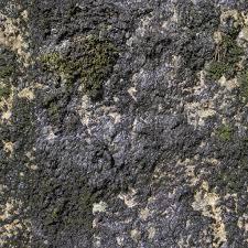 seamless dark water texture. Sunny Wet Mossy Rock Black Fungus Dark Moss Leaking Water Sun Light Beige Shiny Stone Seamless Texture