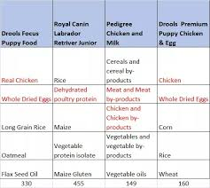 Pedigree Puppy Food Feeding Chart Which Dog Food Between Royal Canin Pedigree And Drools Is