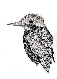 cute bird drawing tumblr. Brilliant Drawing Drawn Bird Pen 6 In Cute Bird Drawing Tumblr