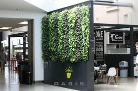 artificial green wall nz