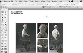 The Digital Art Studio Illustrators New Crop Image Button