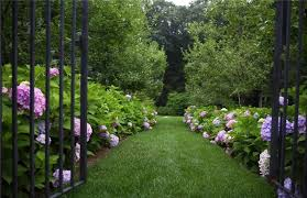 Small Picture Garden Path Walkway Ideas Landscaping Network